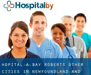 Hôpital à Bay Roberts (Other Cities in Newfoundland and Labrador, Terre-Neuve-et-Labrador)