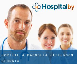 hôpital à Magnolia (Jefferson, Georgia)