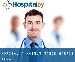 hôpital à Magnum Manor (Harris, Texas)
