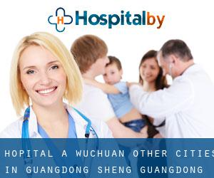 Hôpital à Wuchuan (Other Cities in Guangdong Sheng, Guangdong Sheng)