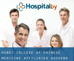 Hubei College of Chinese Medicine Affiliated Gucheng Hospital (Jingzhou)